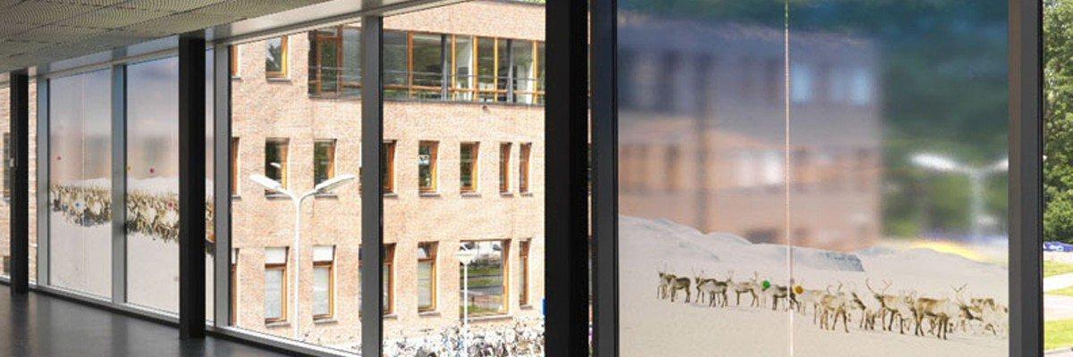 Artwork Scarlett Hooft Graafland on windows AMC hospital